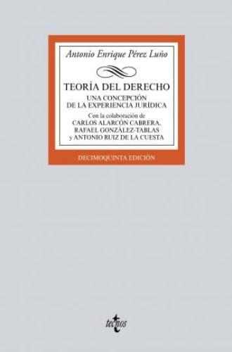 TEORIA DEL DERECHO - UNA CONCEPCION DE LA EXPERIENCIA JURIDI